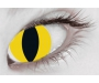 Halloween Kontaktlinsen - Wild Cat Tageslinsen