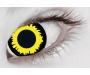 Halloween Kontaktlinsen - Wolf Tageslinsen