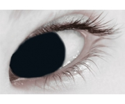 Halloween Kontaktlinsen - Black Out Tageslinsen