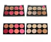 technic Colour Fix Blush & Puder Kontur Paletten Set